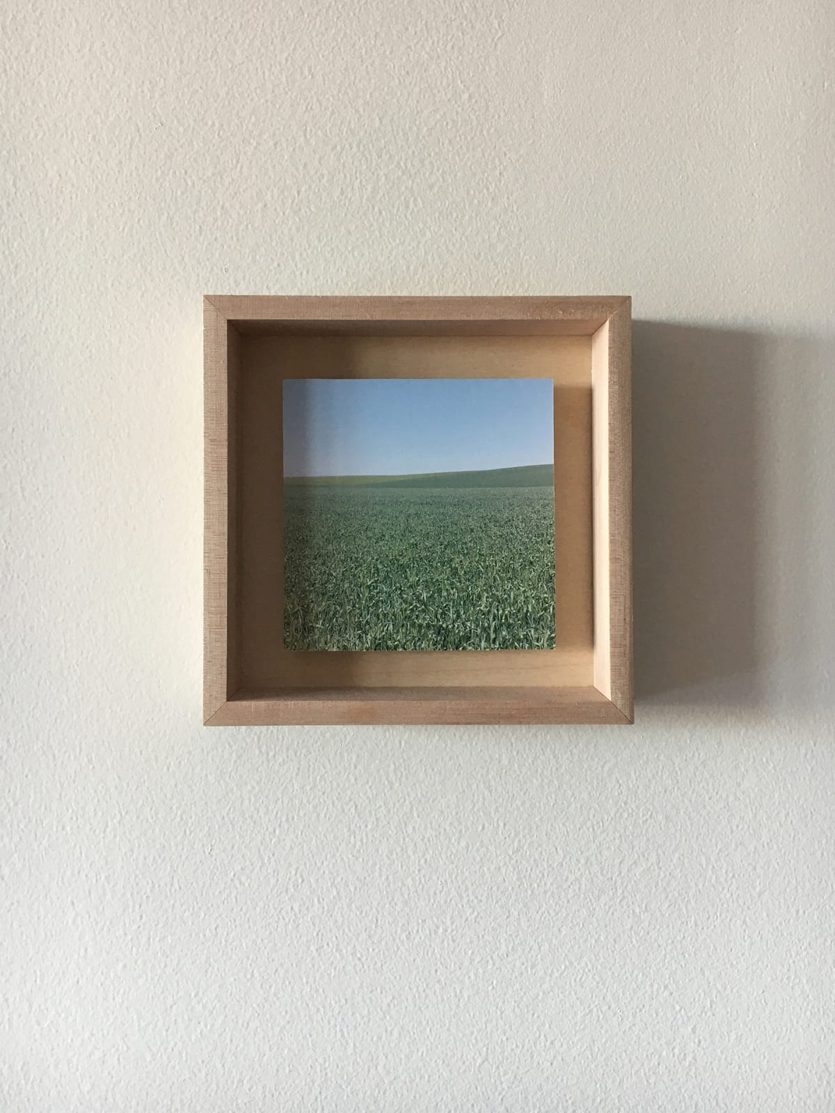 Grace Clark Sweet Fields IV, 2020 digital pigment print 6 x 6 inches, edition 1/3 $ 500.00