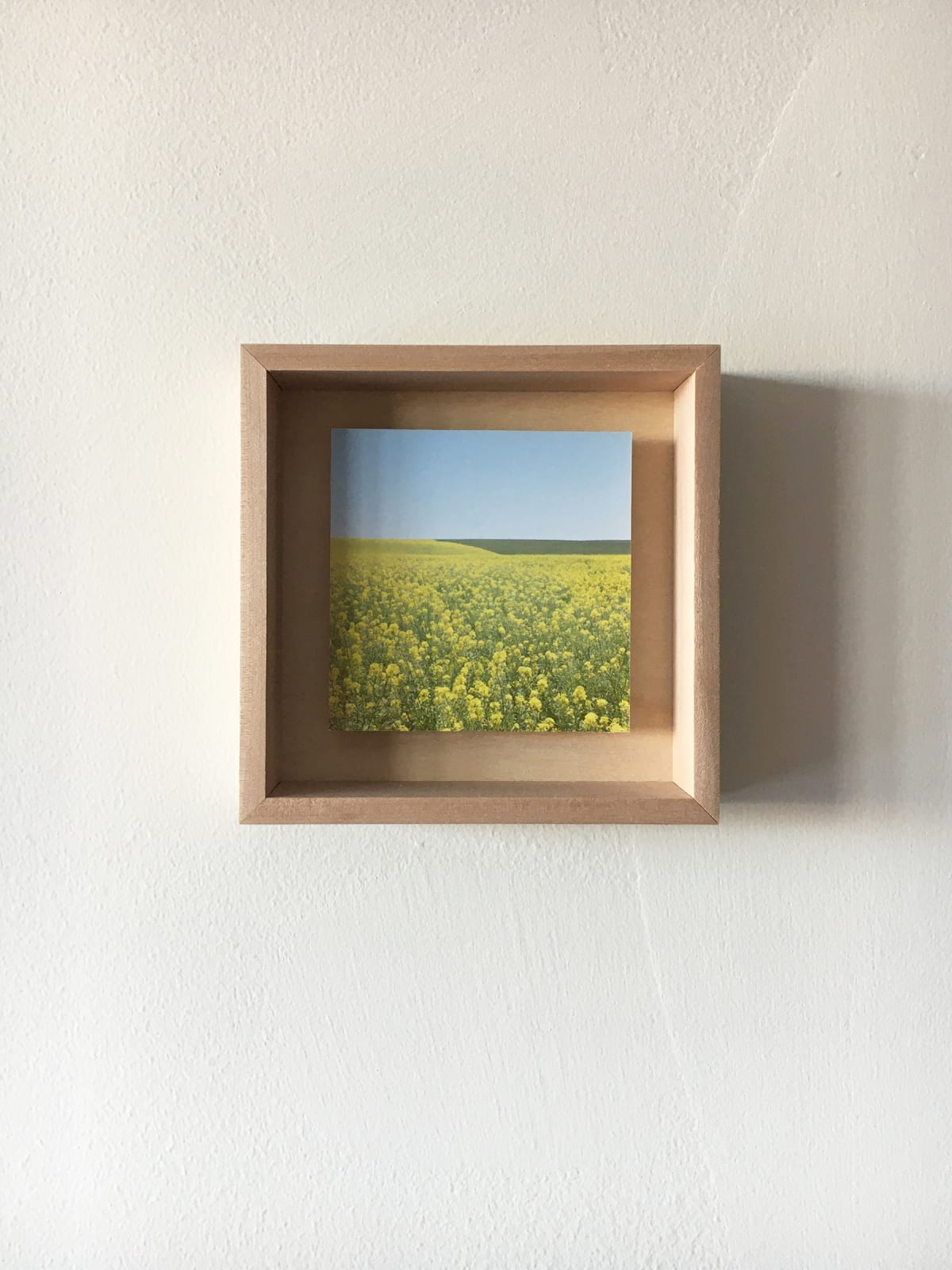 Grace Clark Sweet Fields III, 2020 digital pigment print 6 x 6 inches, edition 1/3 SOLD *edition 2/3 and 3/3 available