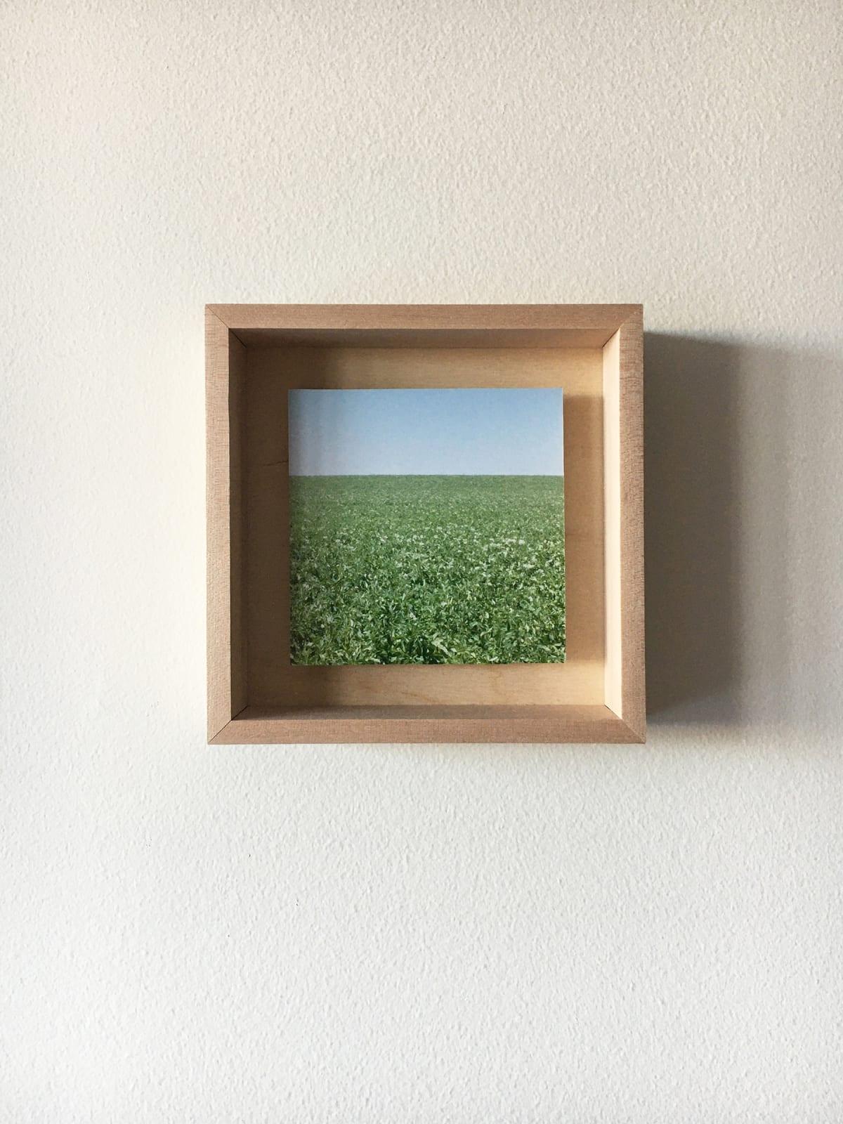 Grace Clark Sweet Fields II, 2020 digital pigment print 6 x 6 inches, edition 1/3 $ 500.00
