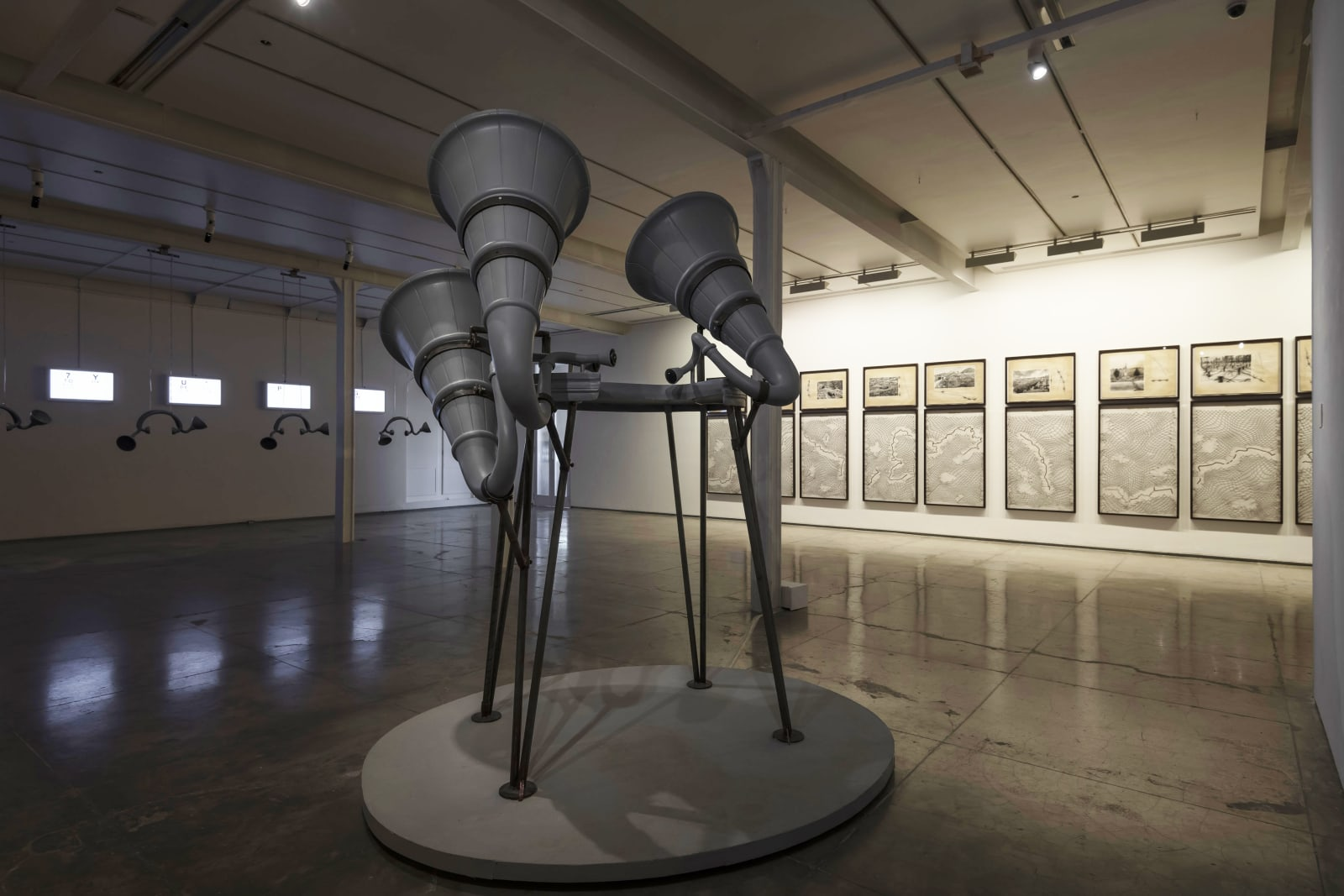 Reena Kallat, BLIND SPOTS, Display View