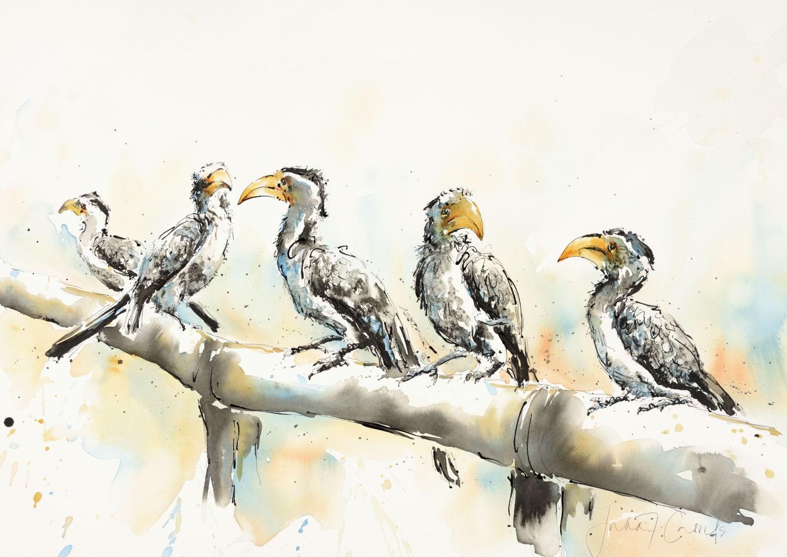 Chattering Hornbills, £1,750