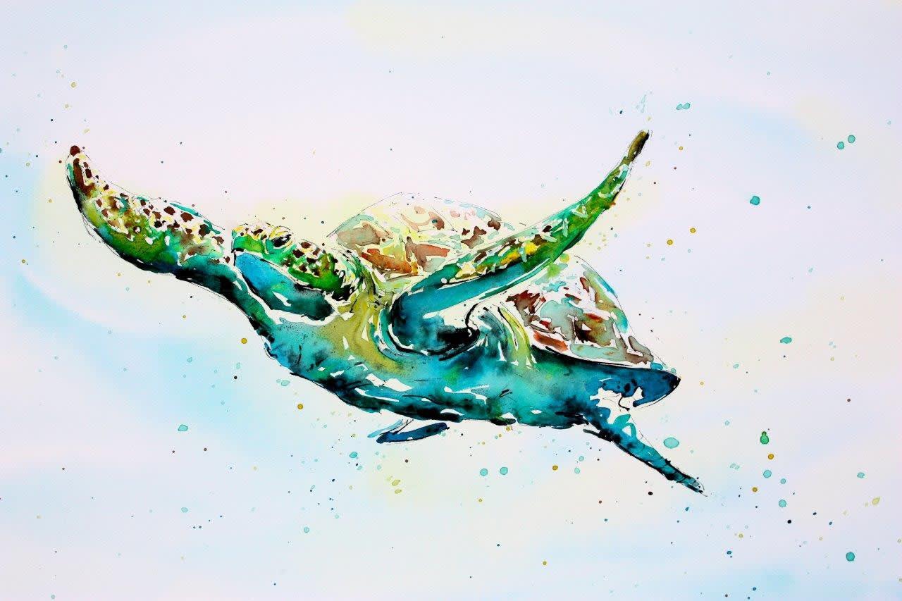 Green Turtle, £1,650