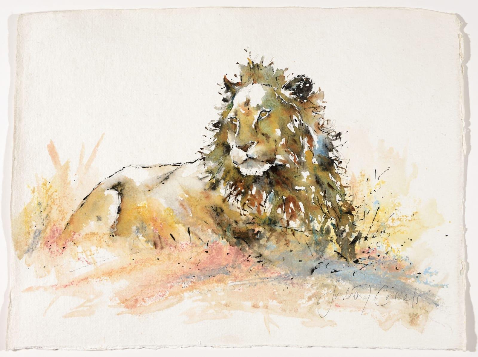 Kruger Male, £950
