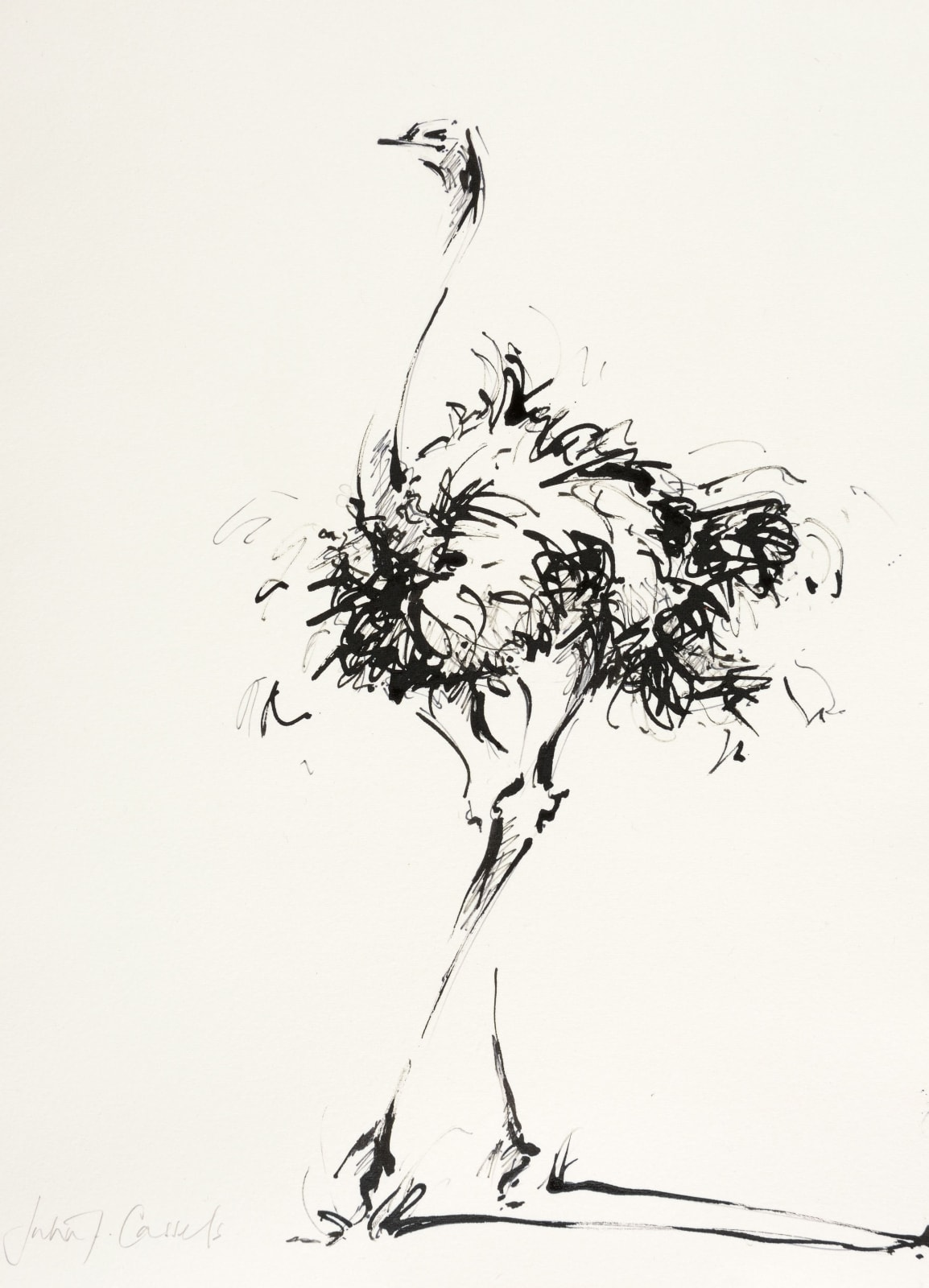 Scribble of Feathers, £295