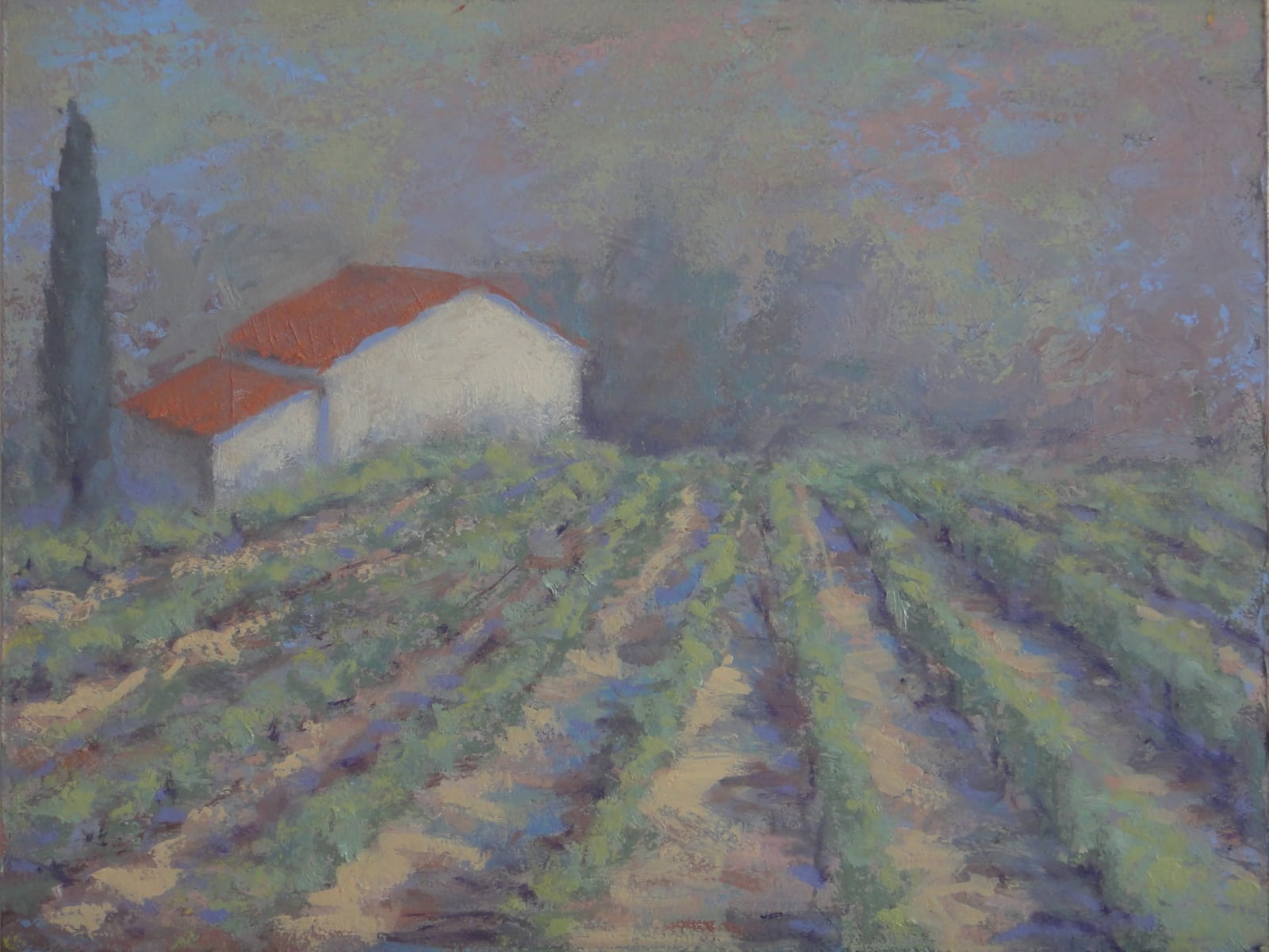 Hermione Owen Young Vines Signed Oil on board 10 x 13 in 25.4 x 33 cms