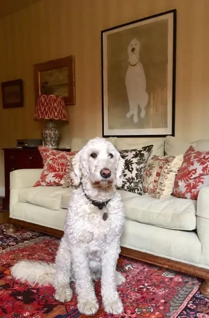 A photo of the dog Jutice siting in pride posititon in front of his drypoint portrait by Kate Boxer