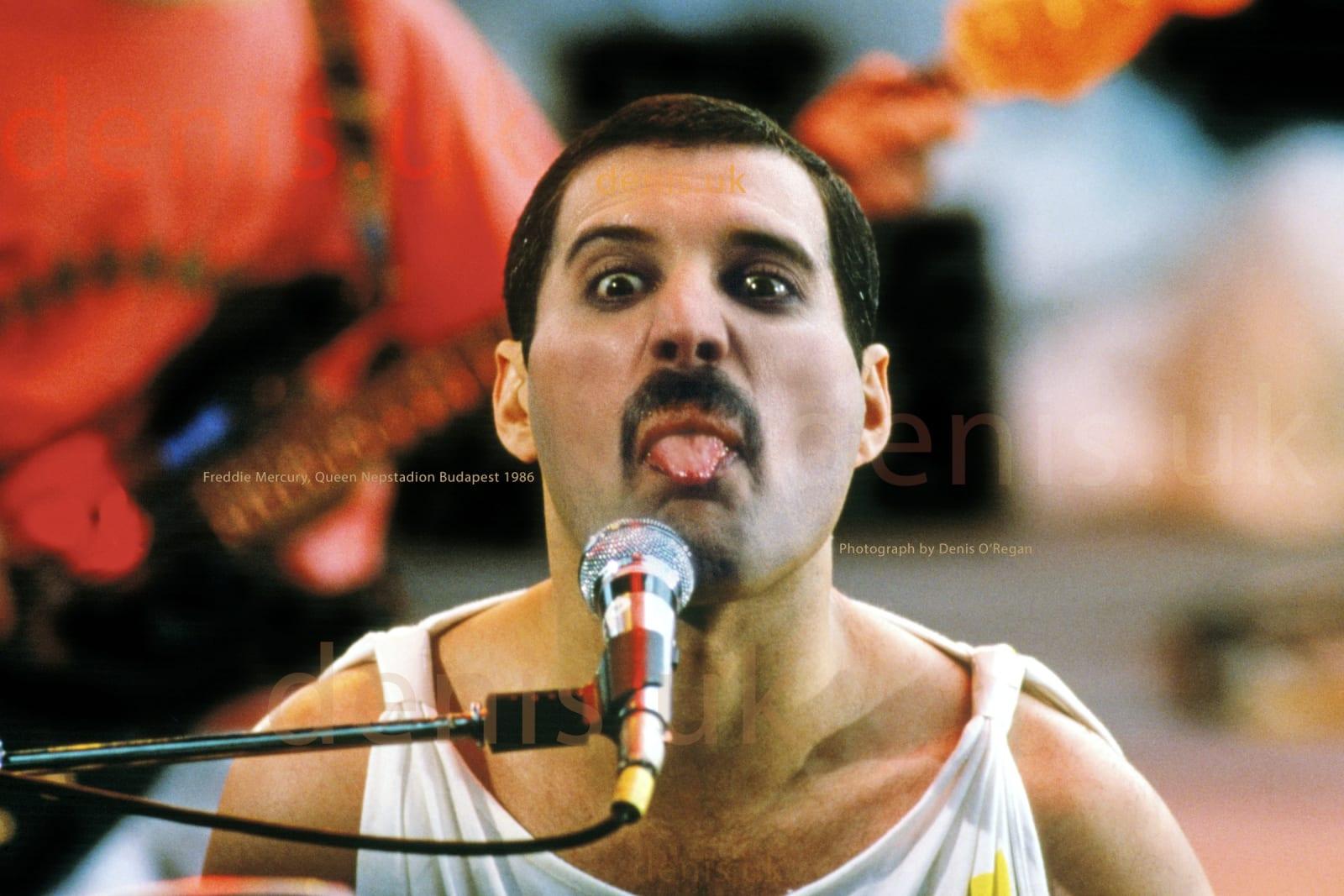 QUEEN, Freddie Mercury Live Budapest, 1986