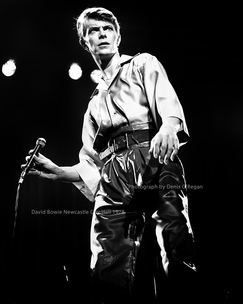 DAVID BOWIE, David Bowie Newcastle City Hall, 1978