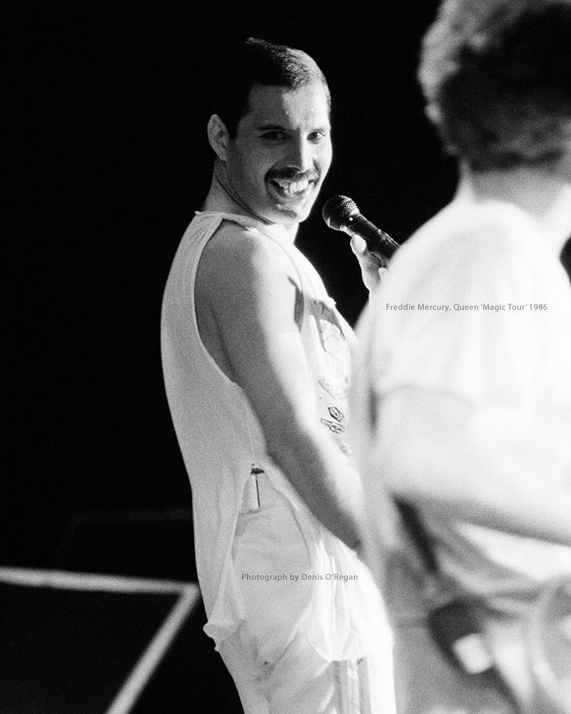 QUEEN, Freddie Mercury Live, 1986