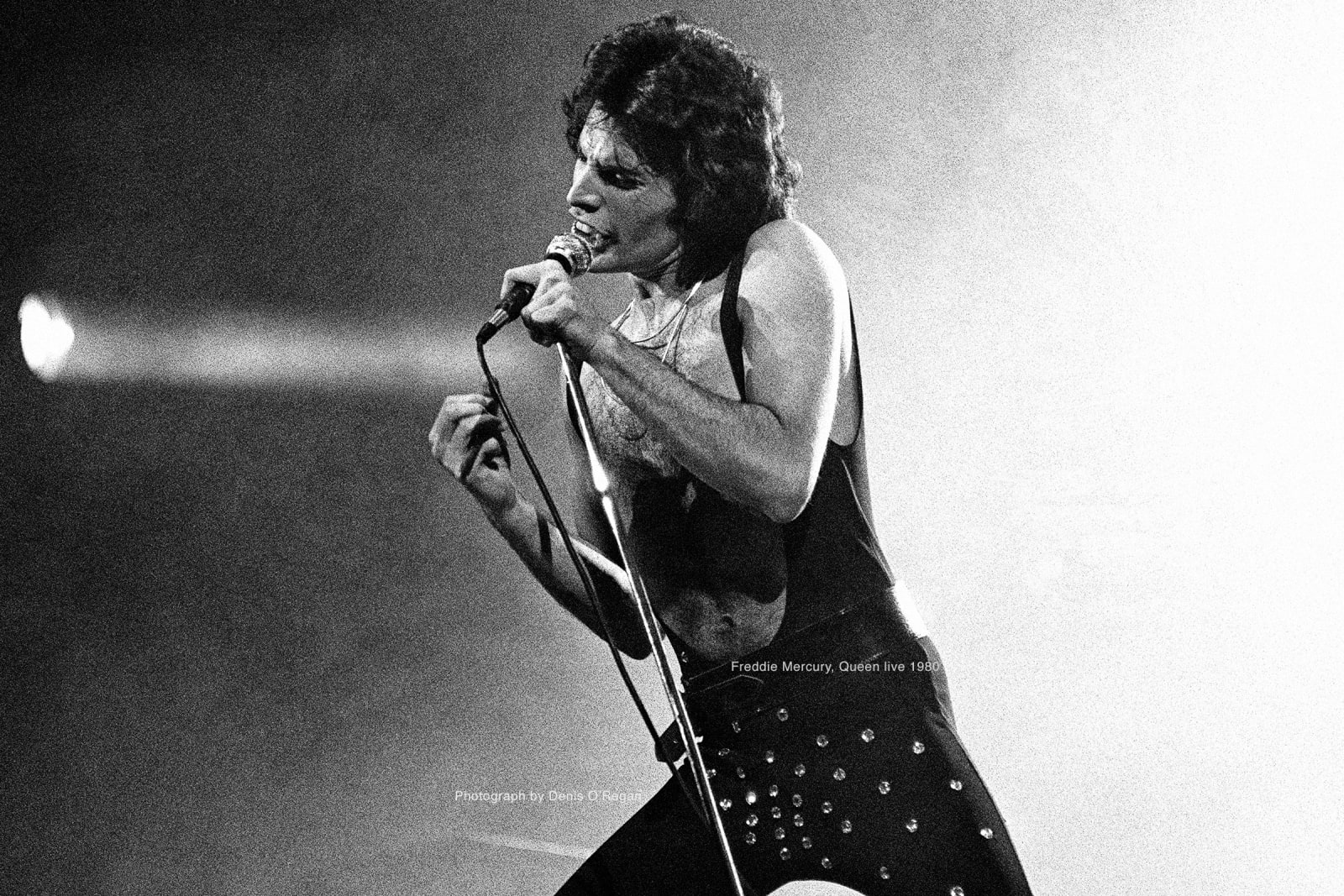QUEEN, Freddie Mercury Live, 1980