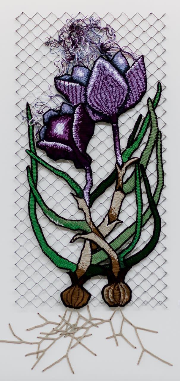 Viscera Flower (crocus)