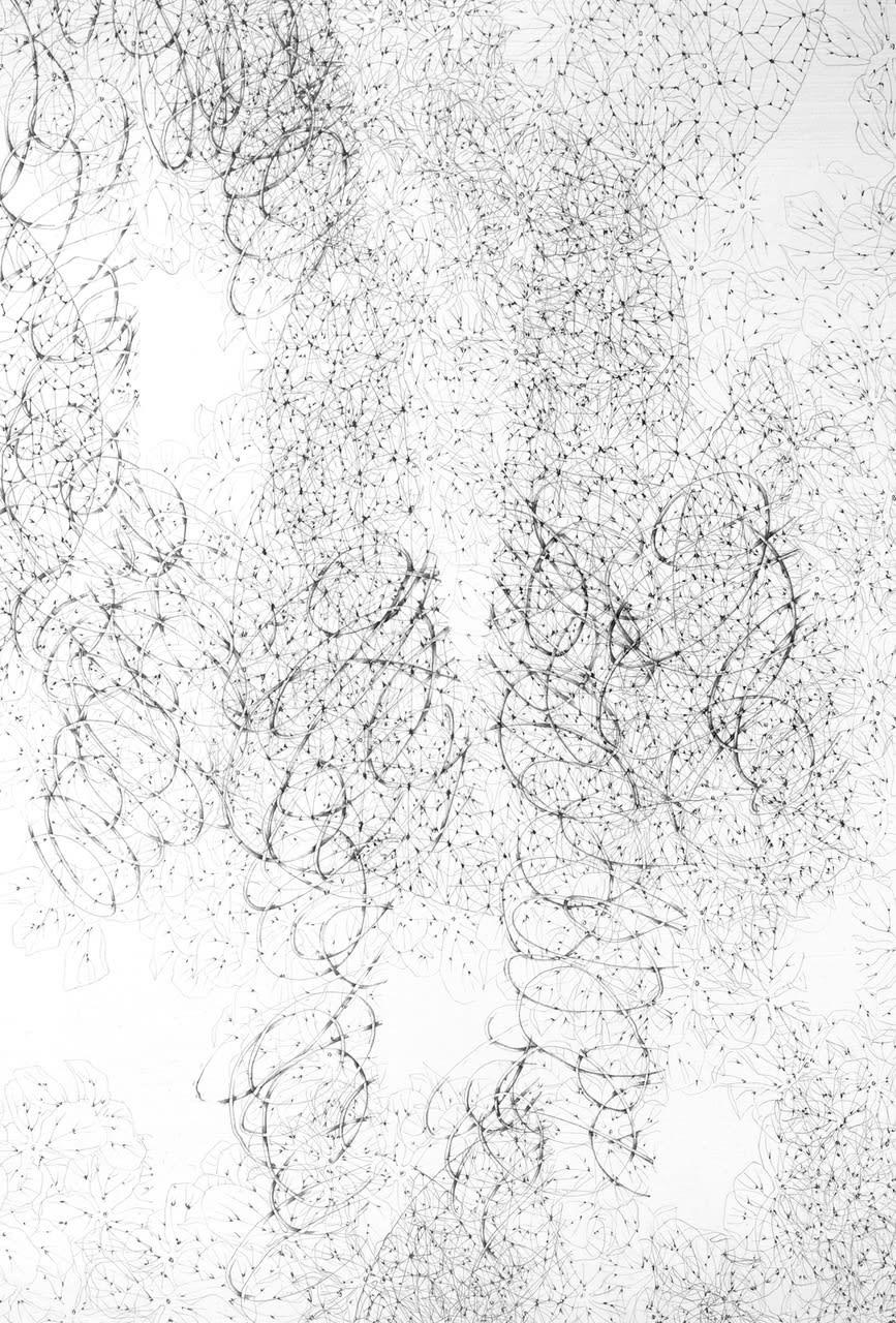 Untitled (hydrangea) Detail