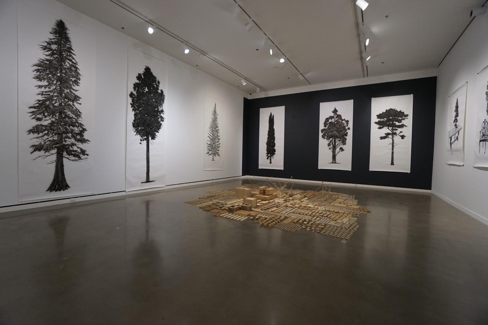 Intimate Expansive, Rochester Art Center, Minnesota, Jan 18, 2018 - May 27, 2018