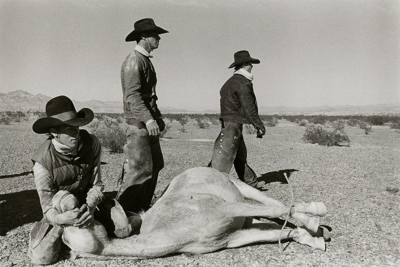 David Hurn - Arizona. Last wild horse round-up. Bullhead City, 1980