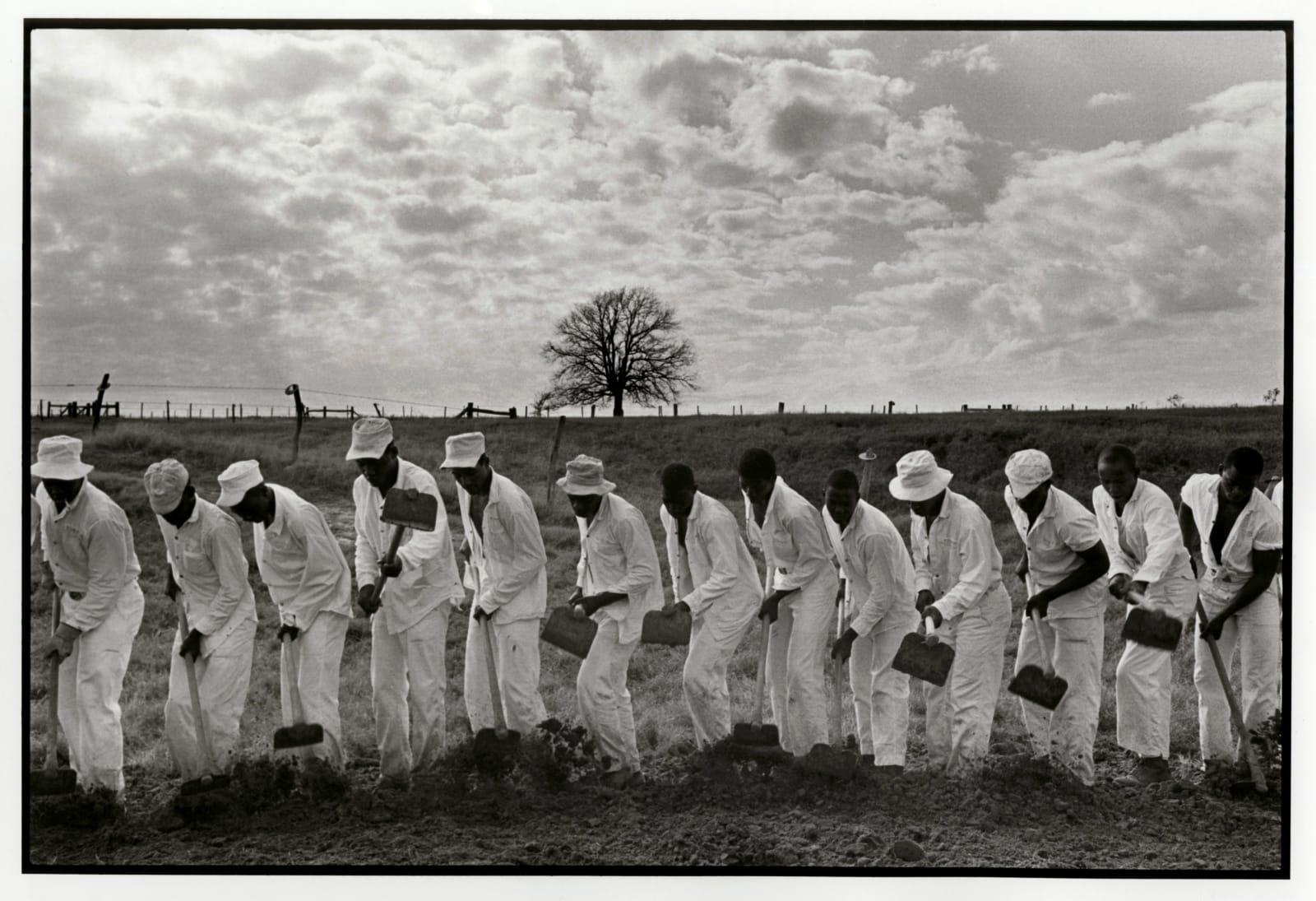 Danny Lyon - The Line, Ferguson Unit, Texas Department Of Corrections, 1968