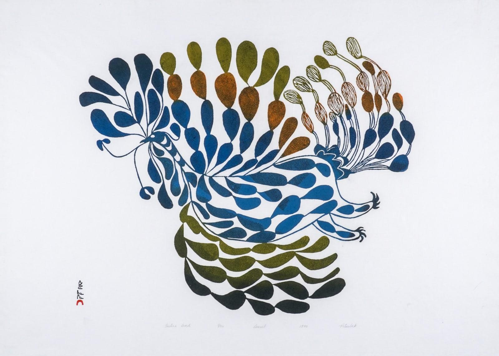 LOT 17 PITSEOLAK ASHOONA, R.C.A., O.C., (1904-1983) KINNGAIT (CAPE DORSET) Festive Bird, 1970 stonecut, 23 1/2 x 33 1/2 in (59.7 x 85.1 cm) ESTIMATE: $1,800 —$2,800
