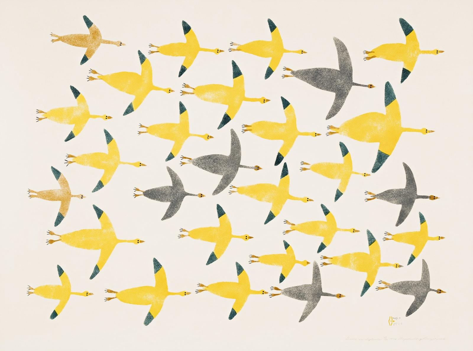 Lot 86 LUKE ANGUHADLUQ (1895-1982) QAMANI'TUAQ (BAKER LAKE) Geese in September, 1972 (1973 #3) stencil, framed, sight: 28.5 x 42.5 in (72.4 x 108 cm) Estimate: $2,500— $3,500