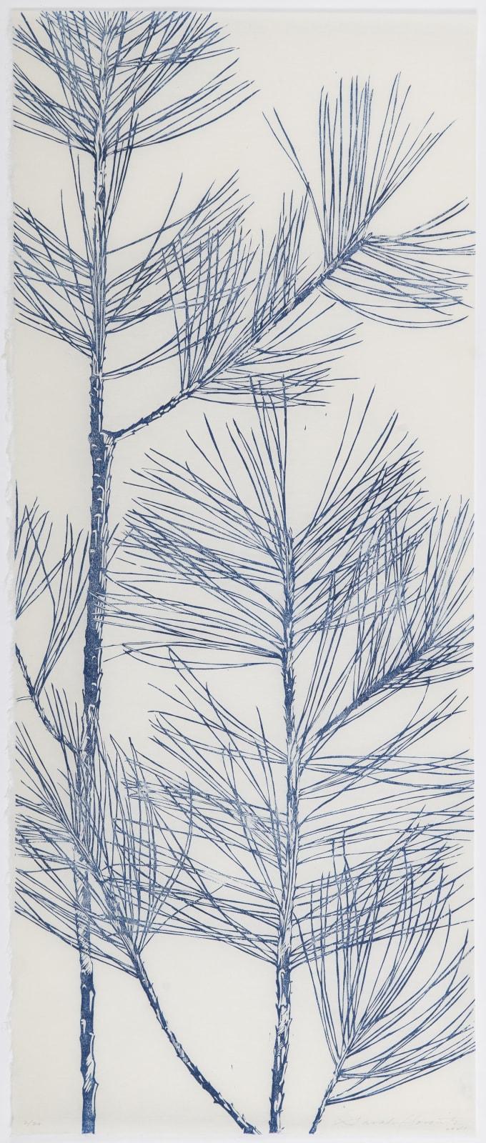 Sarah Horowitz, Blue Pines II, 2021
