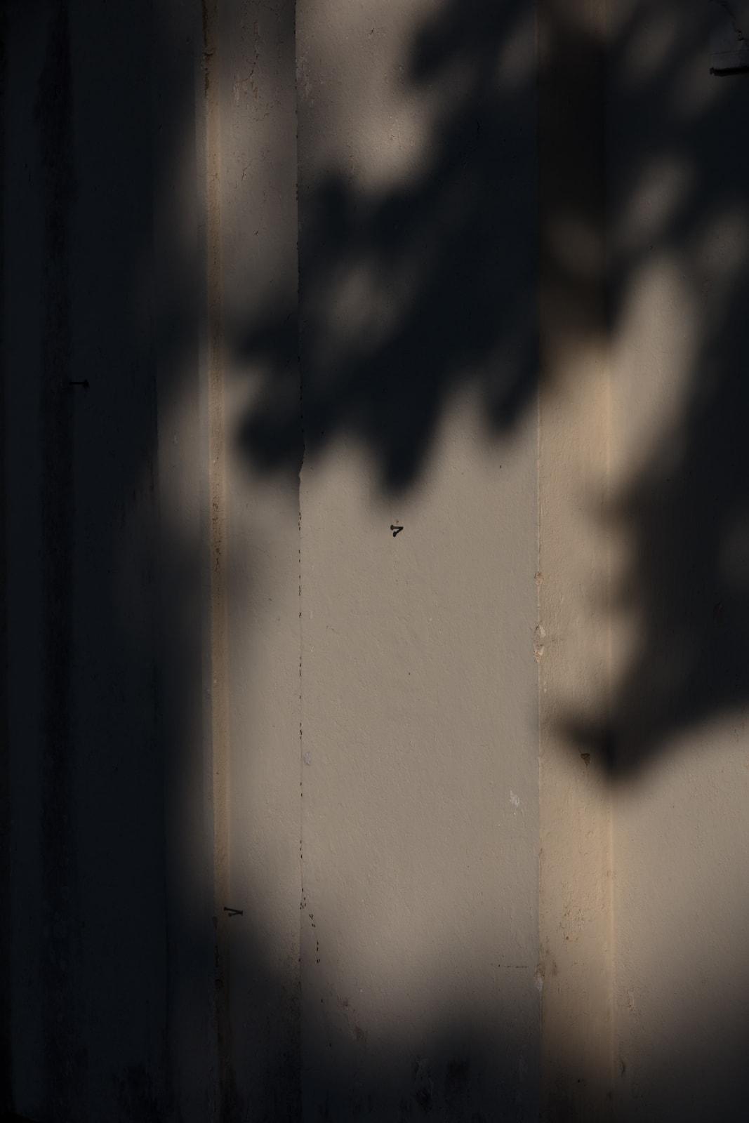 Nataša Segulin, Dugi otok Zman 4, 2020