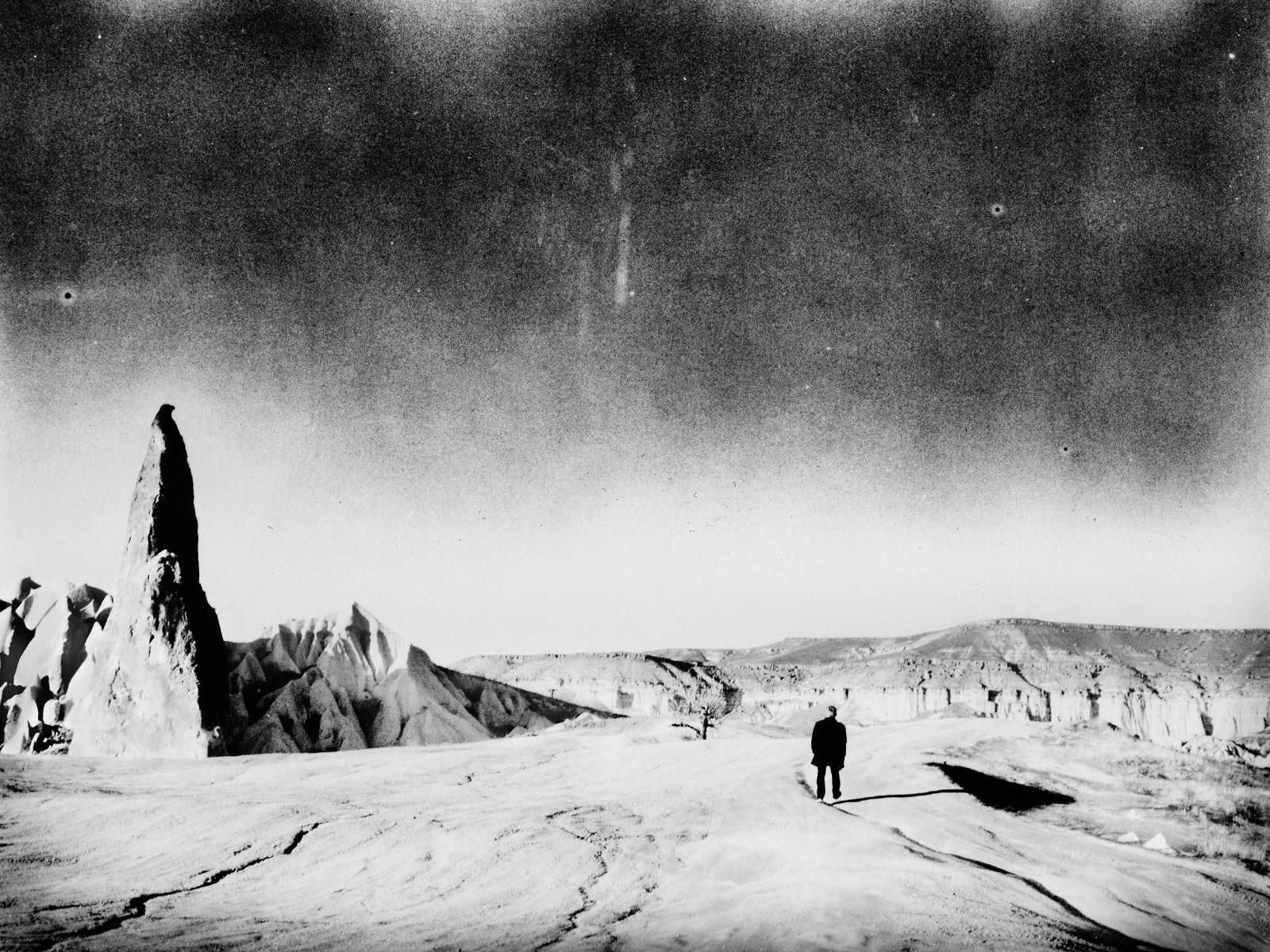 Andrej Lamut, Shadowalker, 2014