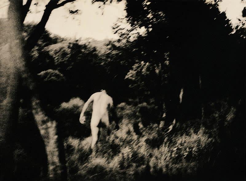 Andrej Lamut, Passage, 2018