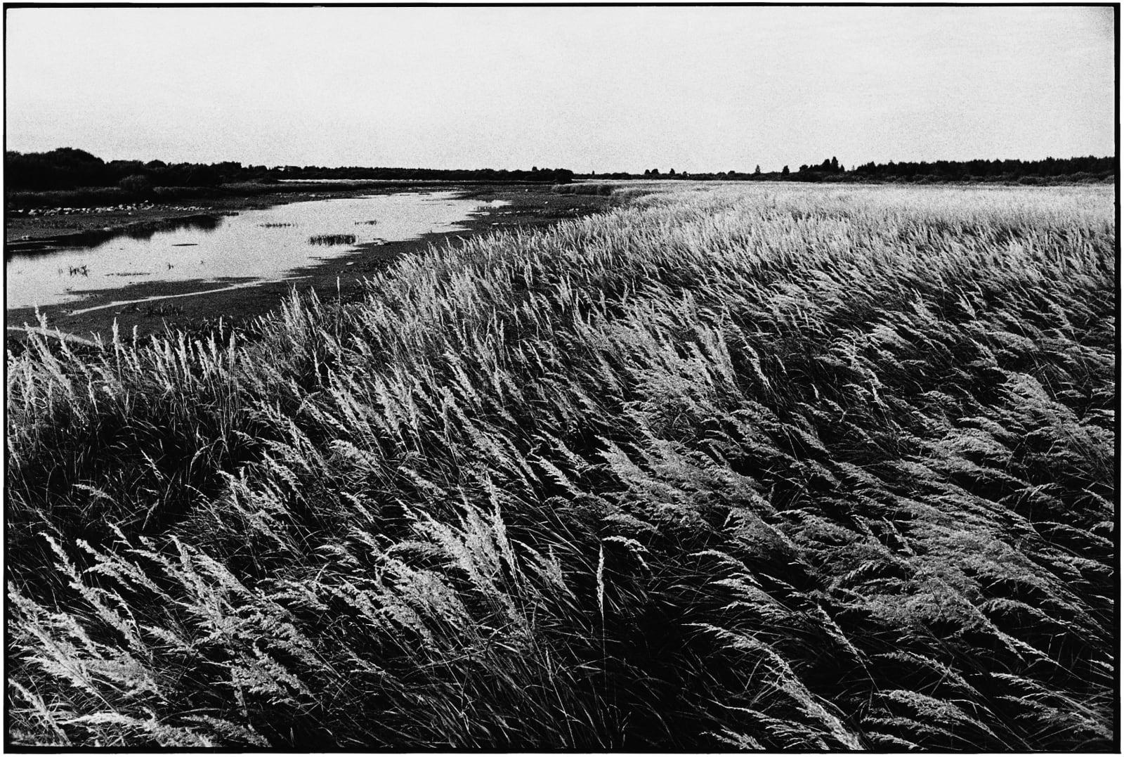 Janez Bogataj, Pastorala I/29, 1980