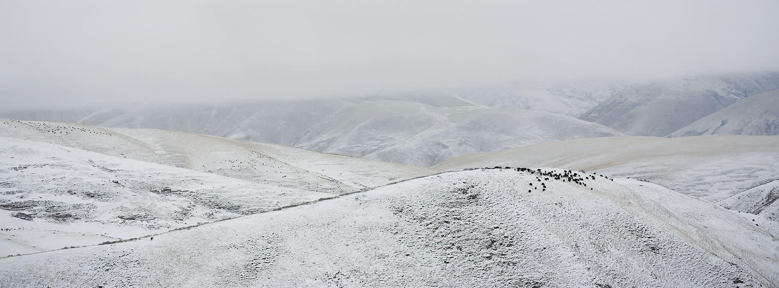 Matjaž Krivic, Derge, Tibet , 2002 – 2006