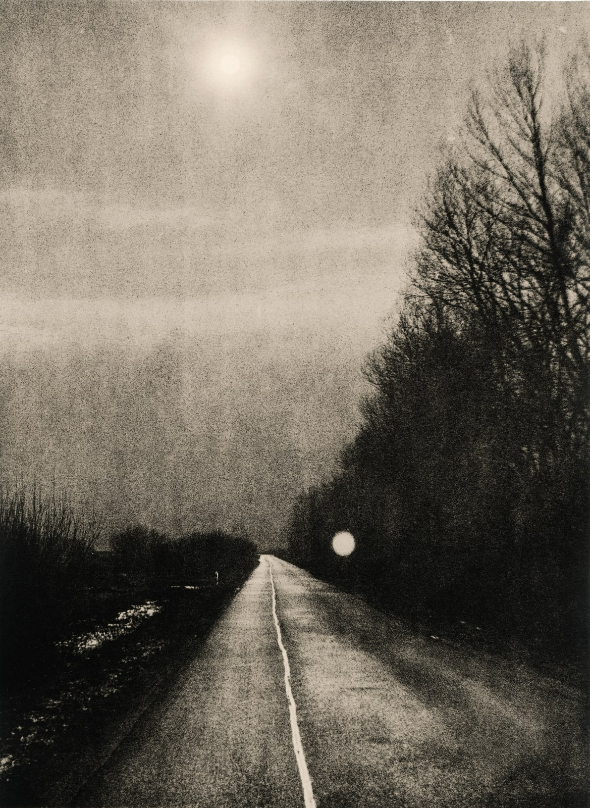Andrej Lamut, The Pathway, 2017