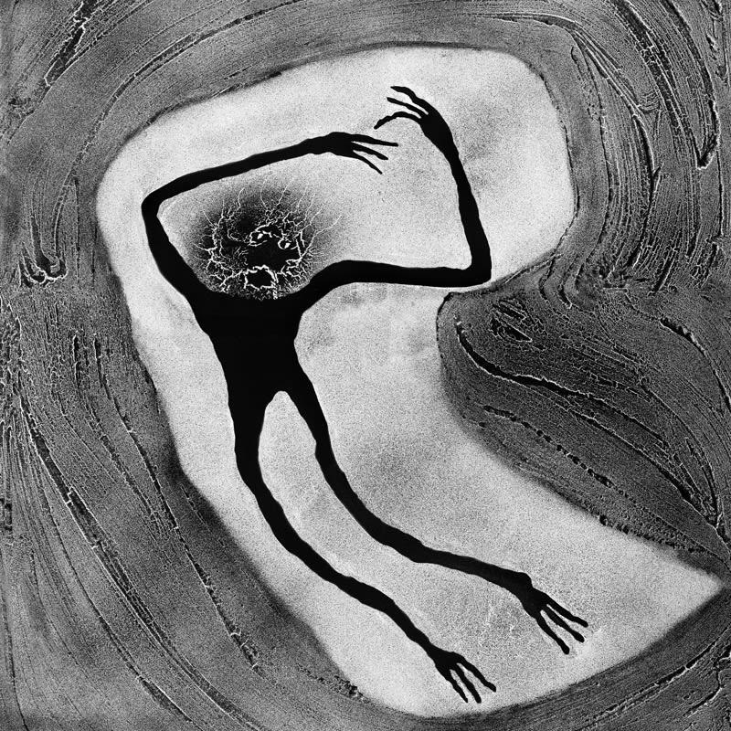 Roger Ballen, Embryotic, 2009