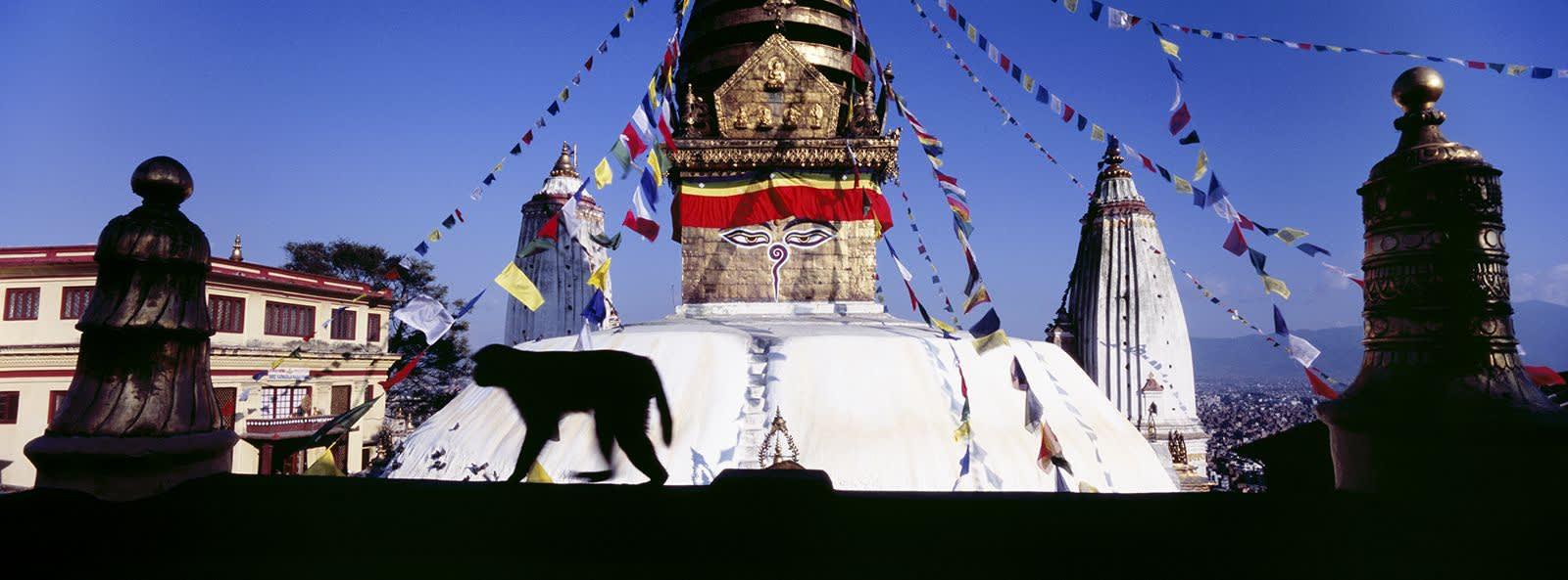 Matjaž Krivic, swayambunath kathmandu, nepal