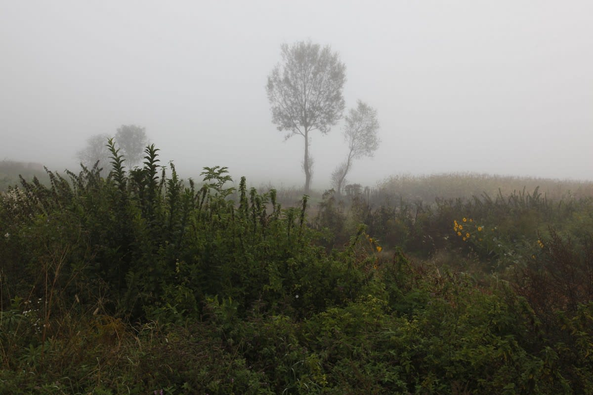 Janez Bogataj, Sonata for Sun and Fog III/1, 2009