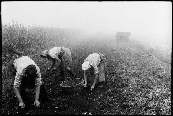 Stojan Kerbler, Picking , 1976