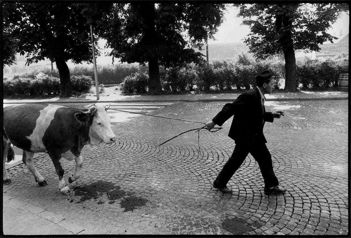 Stojan Kerbler, Going Home, 1977