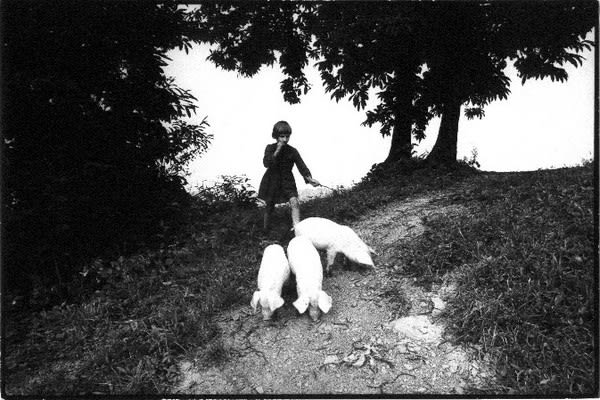 Stojan Kerbler, Girl from Haloze, 1972