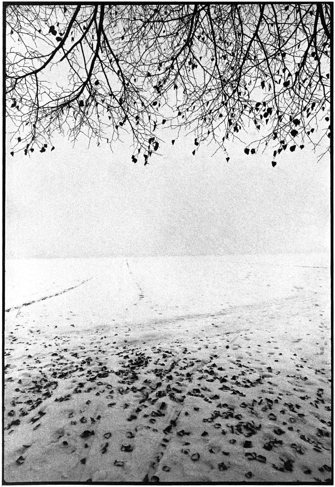 Janez Bogataj, Pastorala I/12, 1980