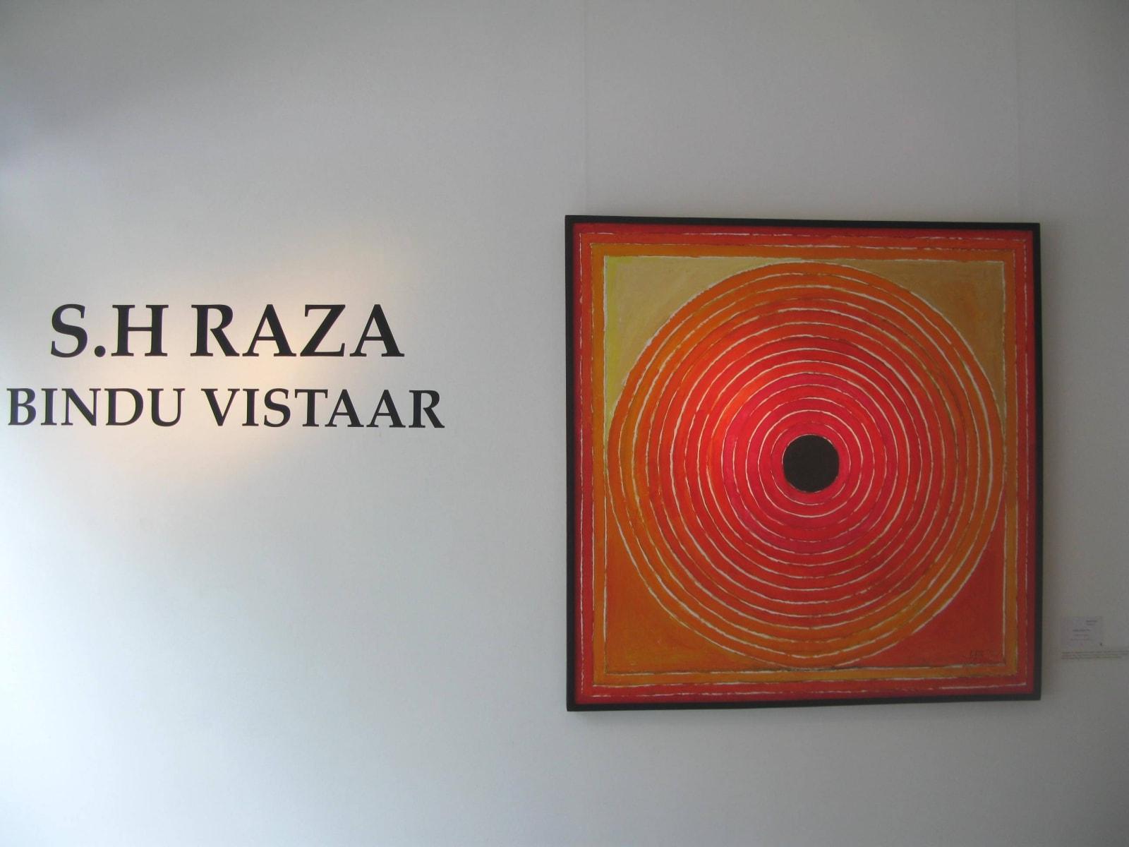 SH Raza, Bindu Vistaar installation shot