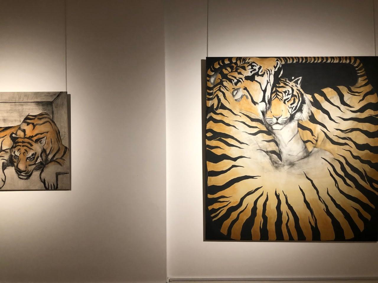 Zimbiri: Solo Exhibition