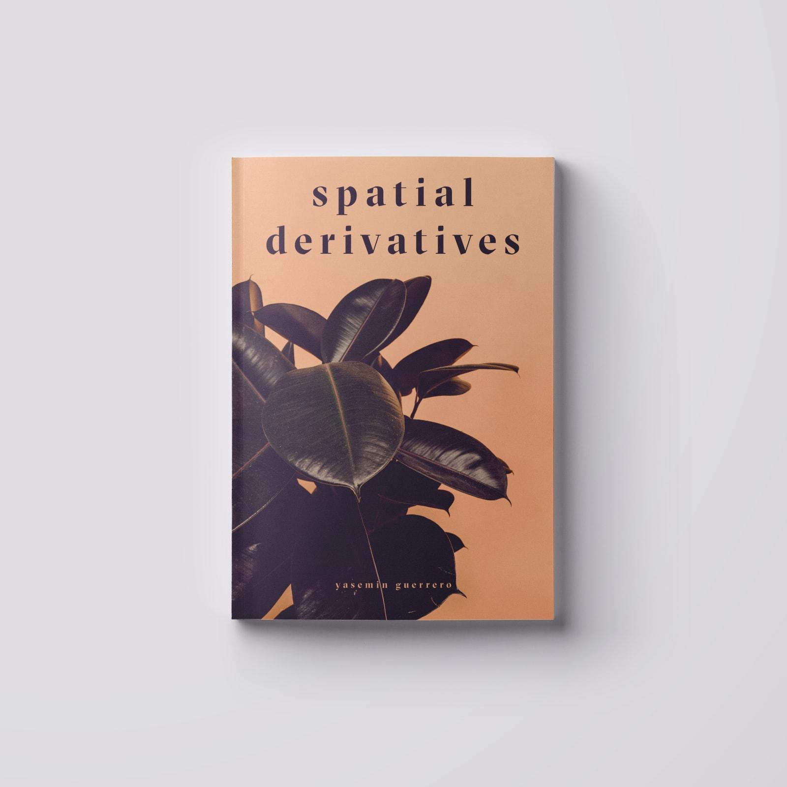 Spatial Derivatives Momentary transcendant textures