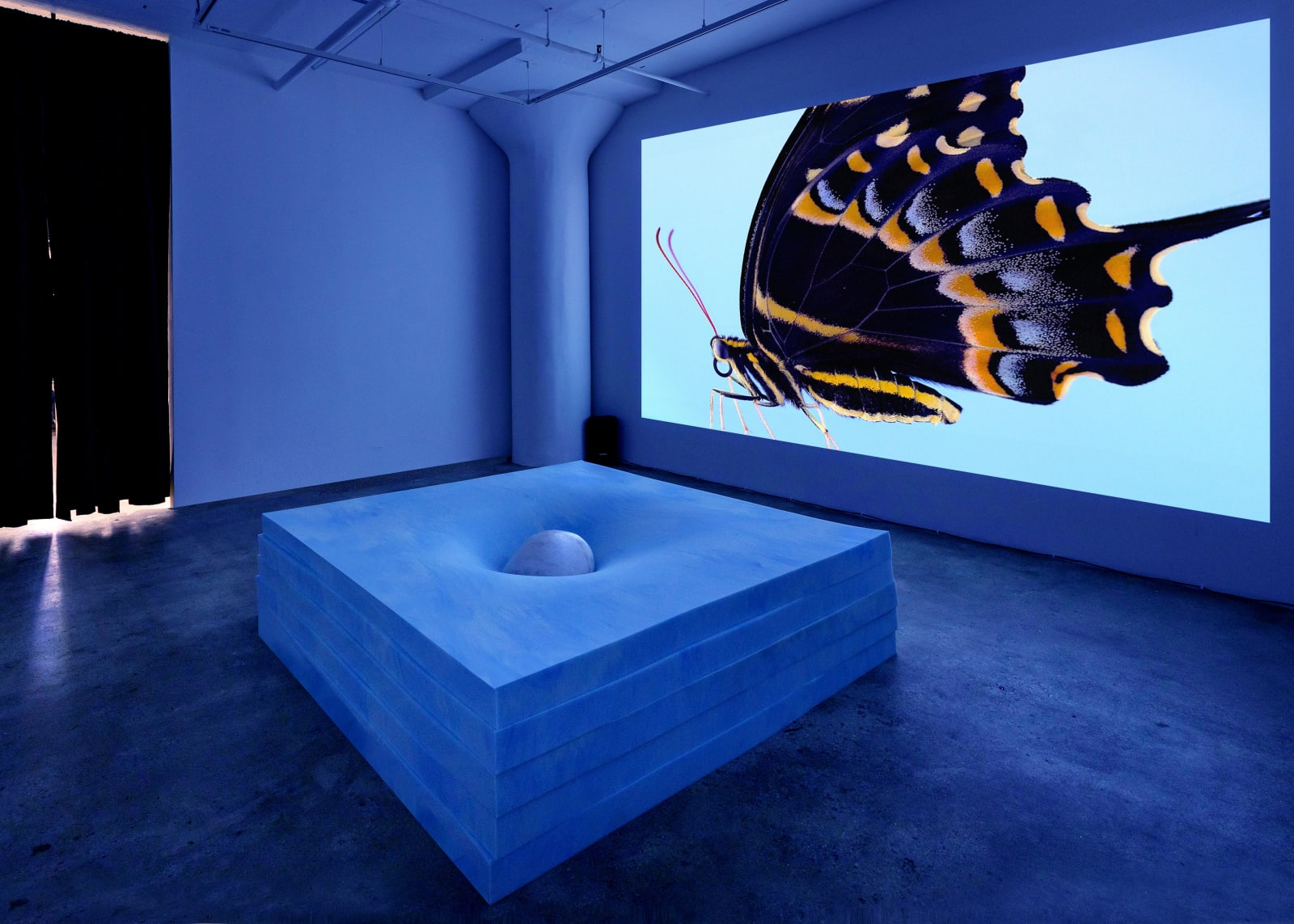 Virginia Lee Montgomery: Dream Cocoon