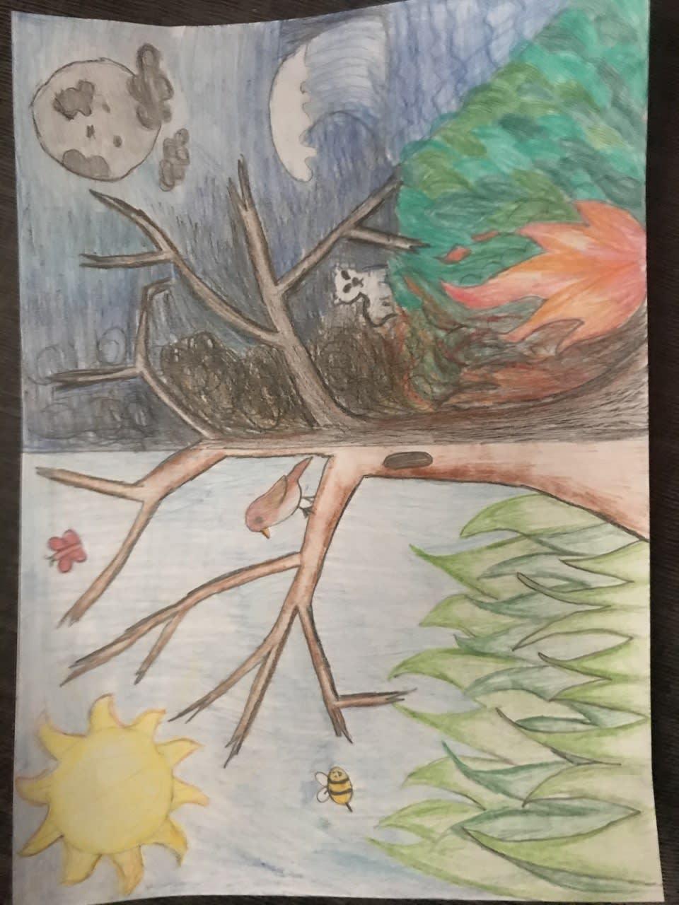 Danika krishnasothy, age 11 Inspired by global warming