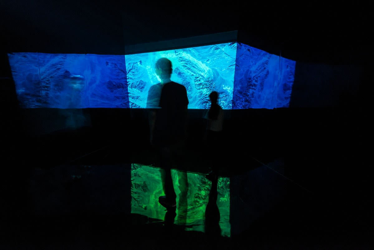 Zheng Chongbin, Chimeric Landscape, Environmental video installation, 2015, 17 Minutes, Installation view, Ink Studio.jpg