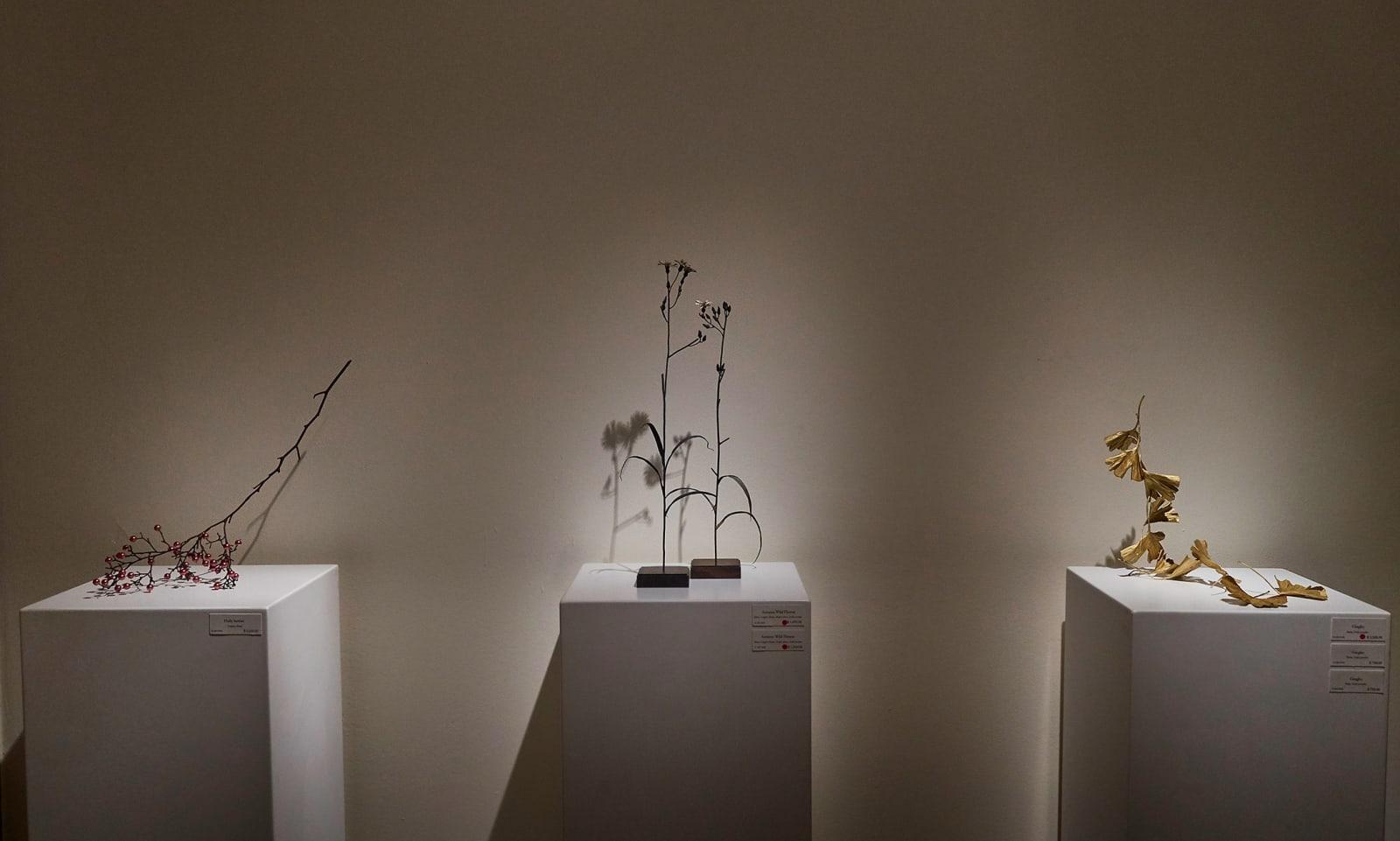 Ripples & Blooms