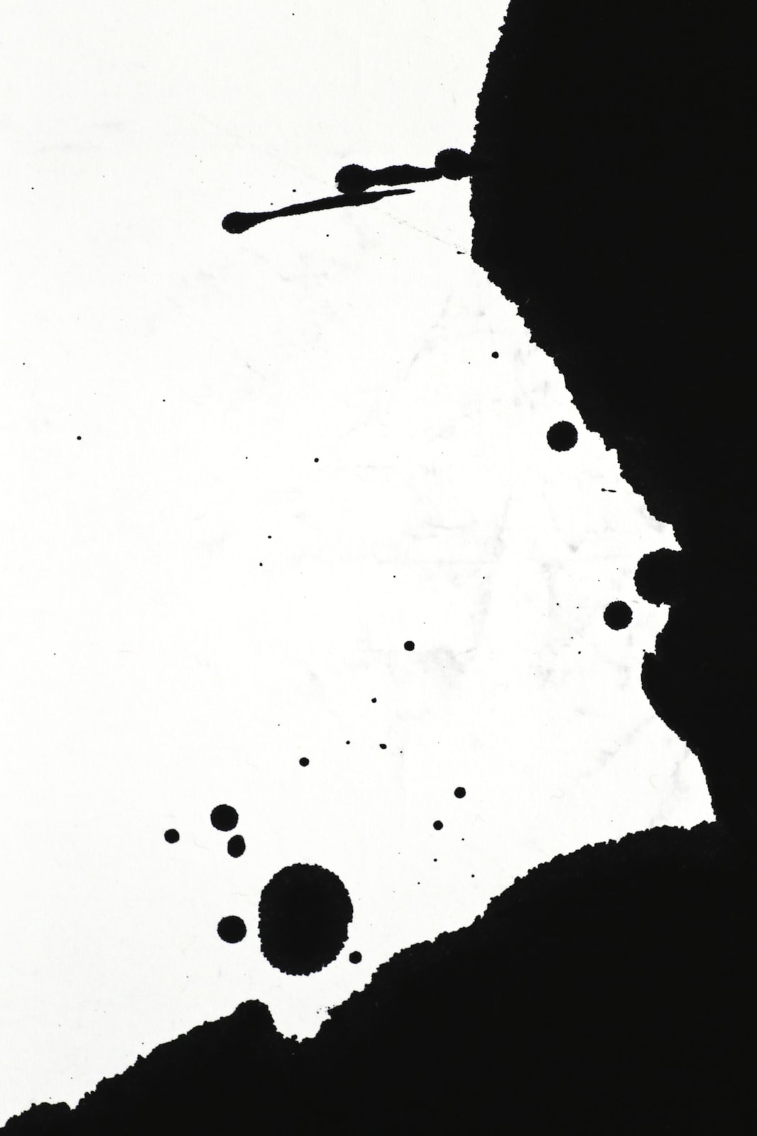 Art of Lines |