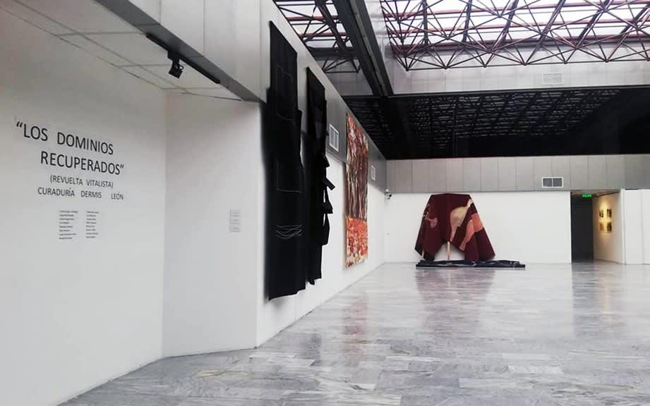 Installation view of Los Dominios Recuperados (Revuelta Vitalista) at the Nahím Isaías Museum in Guayaquil, Ecuador. November, 2020.