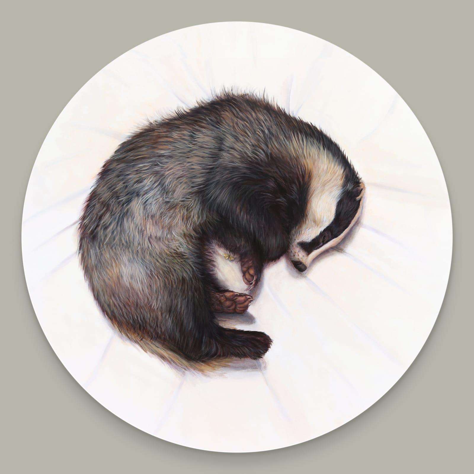 Featured Artists December/January: Rosie Lippett, Katie Wilkins, Hazel Mountford, Rob Ritchie and Jonathan Walker