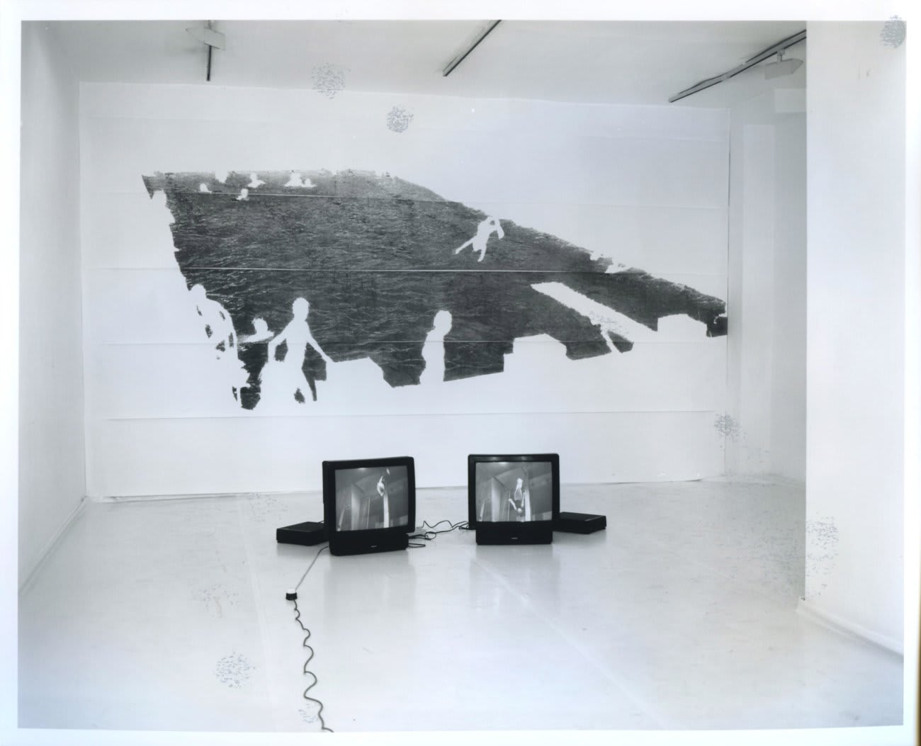 Caroline Caley & Angus Fairhurst: All Evidence of Man Removed, installation view, July 1993