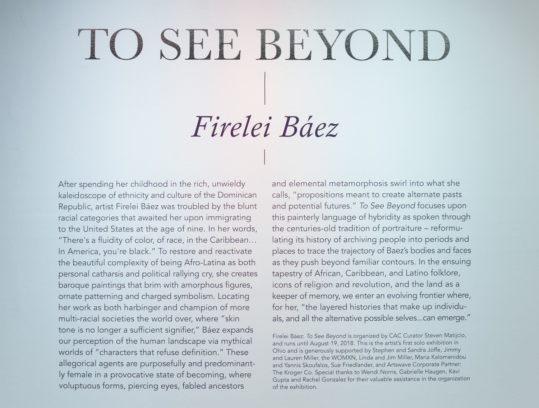 Firelei Báez, To See Beyond