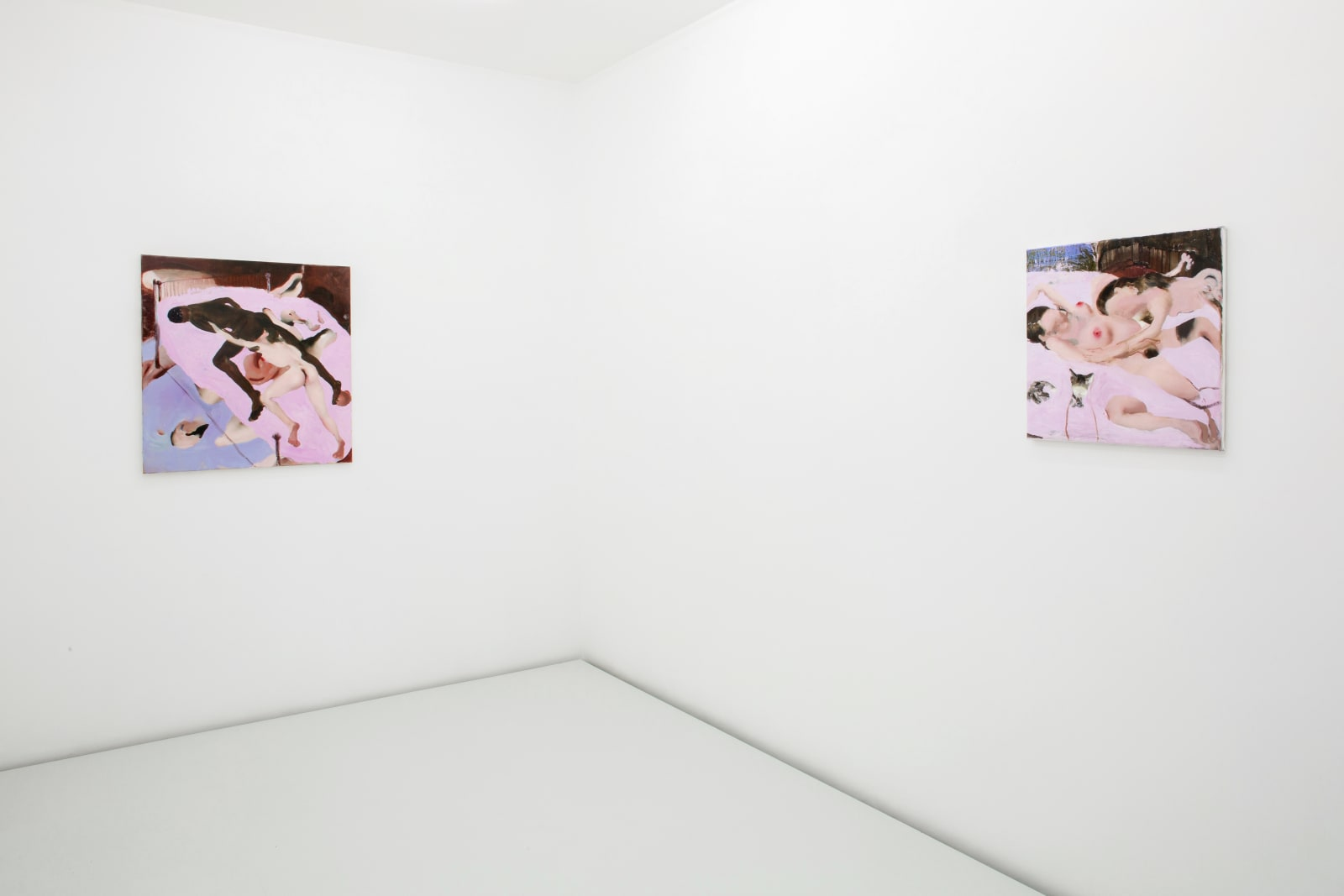 AMBERA WELLMANN exhibition view, In medias res, Lulu, Mexico City