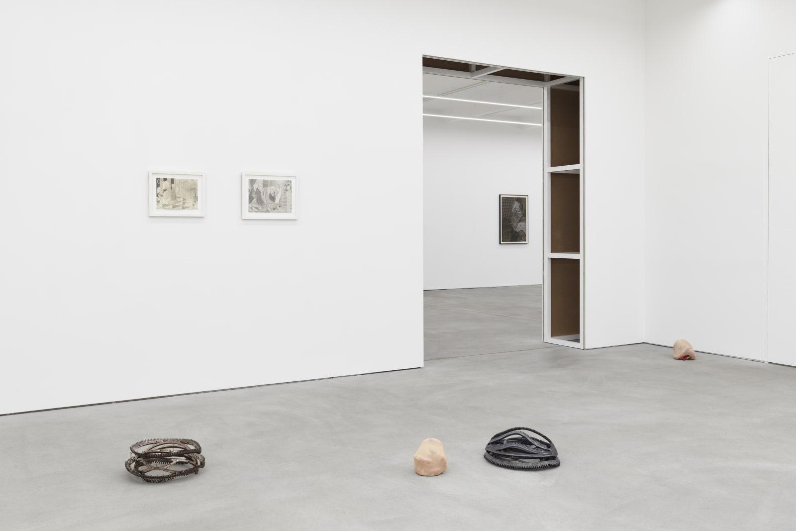 KYUNG-ME, HANNA-MARIA HAMMARI, MAINA-MIRIAM MUNSKY exhibition view, Liminal States, Kraupa-Tuskany Zeidler, Berlin 2019-2020