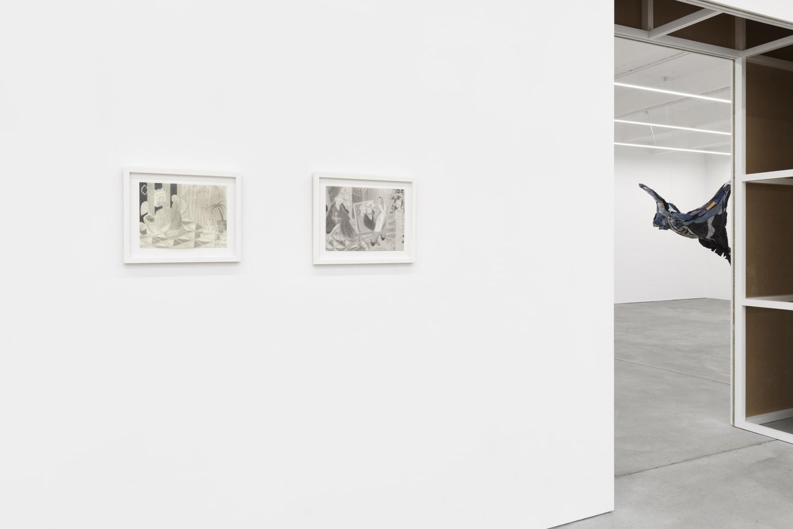KYUNG-ME, TAU LEWIS exhibition view, Liminal States, Kraupa-Tuskany Zeidler, Berlin 2019-2020